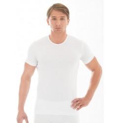 Brubeck Comfort Cotton Футболка мужская T-Shirt c коротким рукавом белая